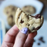 Chocolate Chip Cookies // DelectableBakeHouse.com